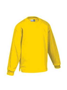 Kid s Kasak Sweatshirt; gold; 104